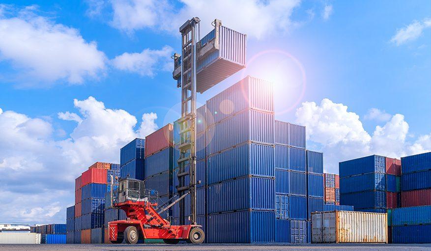 صادرات  شرکت ماران تجارت اشن